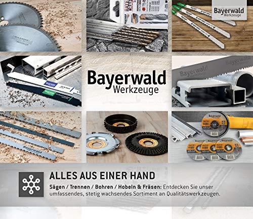 Bayerwald Black Biter Raspelscheibe - 8