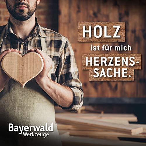 Bayerwald Black Biter Vision - 7